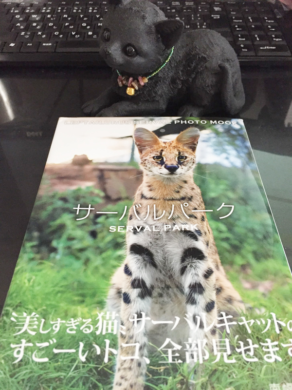 美しすぎる猫(ΦωΦ)サーバルちゃんのフォトムックを買取。
